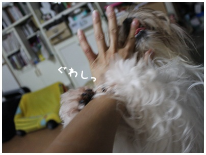 2011-08-11-03.jpg