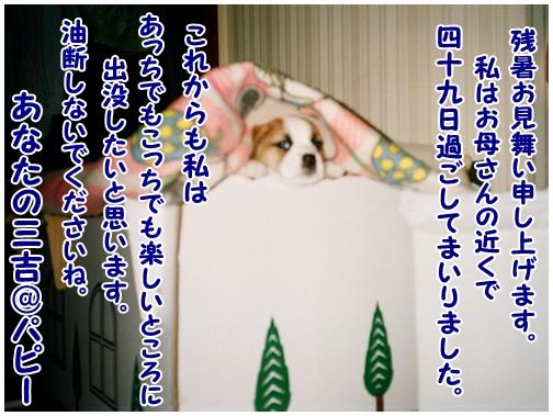 2011-08-16-01.jpg