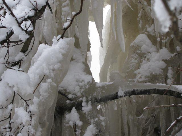 12.1.13-11しぶき氷のすだれ