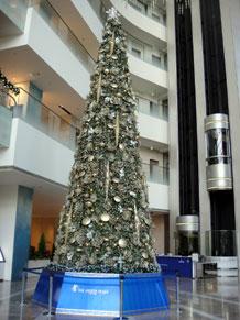 2011-11-26f.jpg