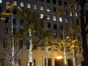 2011-12-22p.jpg