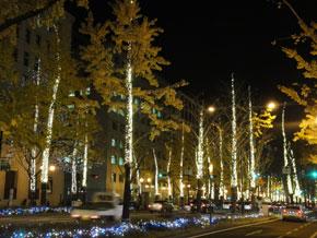 2011-12-22r.jpg
