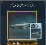 b_aro1.jpg