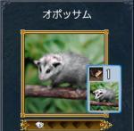 fukurono1.jpg