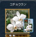 kennjyou2.jpg