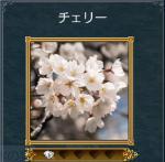 kinomi2.jpg