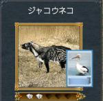 kouryo2.jpg