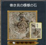makigai1.jpg