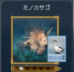 minoka1.jpg