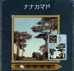 nanaka1.jpg