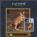 nigeashi2.jpg