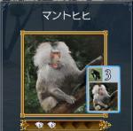 ookinasaru1.jpg