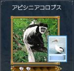 sirokuro2.jpg