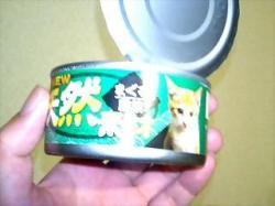 1缶40円の高級猫缶!?