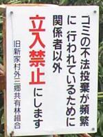 20080130000155
