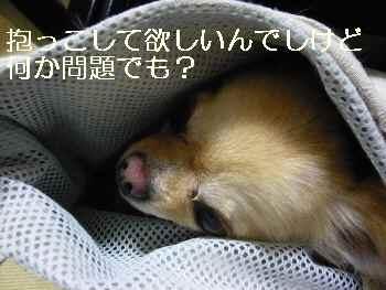 blog2011060105.jpg