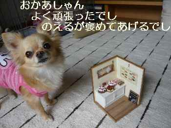 blog2011060802.jpg