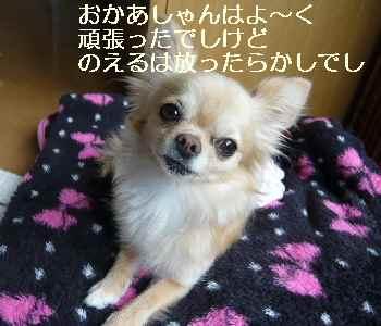 blog2011061001.jpg