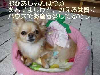 blog2011061101.jpg