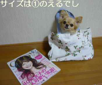 blog2011063001.jpg