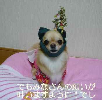 blog2011070701.jpg