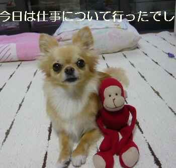 blog2011071201.jpg