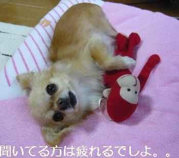 blog2011071203.jpg