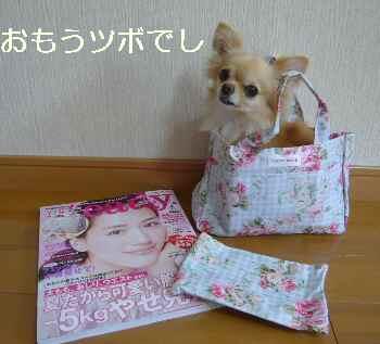 blog2011071501.jpg