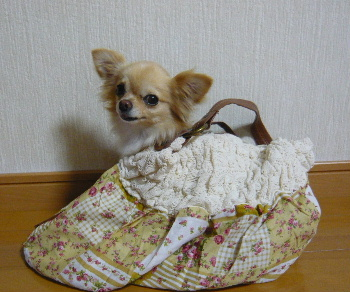 blog2011071605.jpg