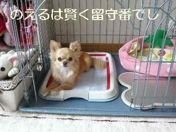 blog2011071703.jpg