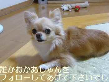 blog2011071903.jpg