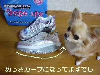 blog2011072004.jpg