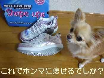 blog2011072101.jpg