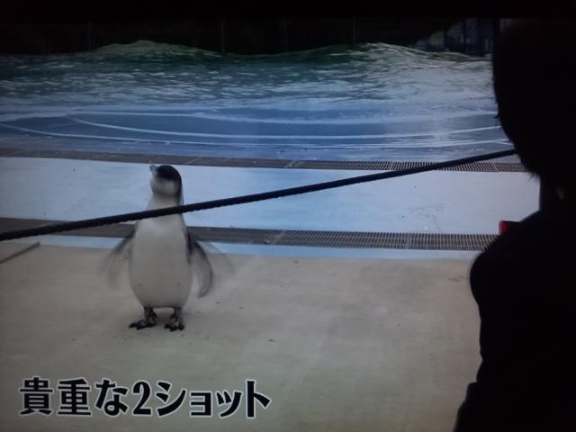 BGMは小田和正さんの曲でお願いします。