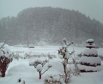 DVC大雪1