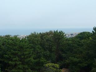 honjiro110814_1.jpg