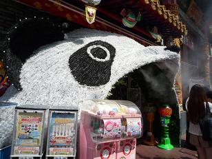 panda110730.jpg
