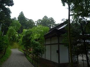 zuiganji_5.jpg