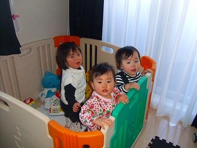 2008_0201しーちゃんるーちゃん0001