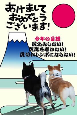 2008_azukitukune.jpg