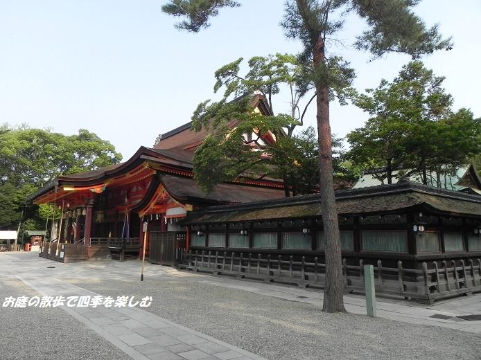 kyouto3.jpg