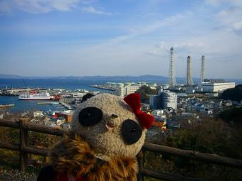 ばぶちゃん久里浜港を眺める