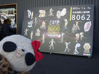 ばぶちゃんキャッツ8062回