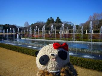 ばぶちゃん神代植物園の噴水と