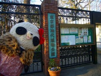 ばぶちゃん神代植物園入口にて