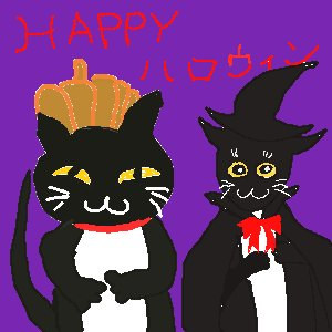 hallowin cat