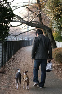 M君と散歩