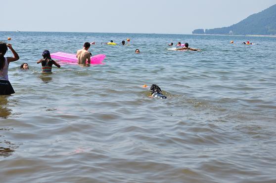 琵琶湖29