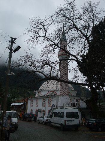 村のモスク