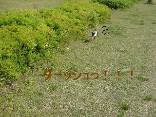 DSC01873.jpg